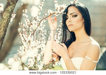Woman With Blooming Apricot