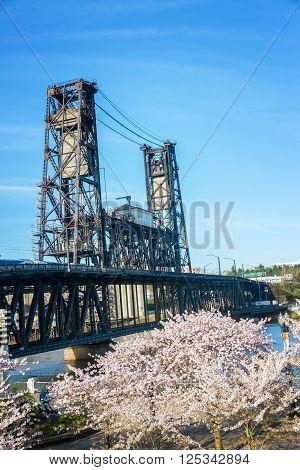 Cherry Blossoms And Steel Bridge