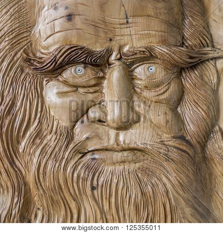Close up of the face of Leonardo da Vinci carved on a wooden board.