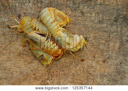 Silver mantis shrimp or known as udang ketak and udang lipan in Malaysia on old wooden chopping board. Shrimp ready to be cooked after mixed with turmeric and salt
