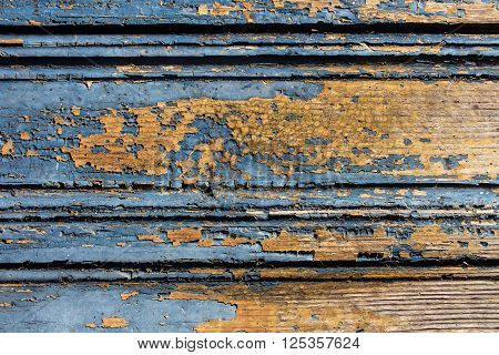 Old blue cracked paint on a orange wood door striped background