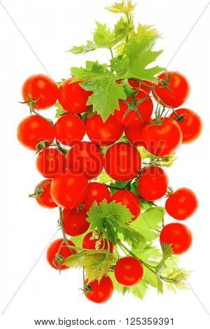 raw fresh cherry tomatoes with green leaves on branch isolated over white background