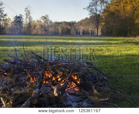 Pile of brush that is burning near a grassy field