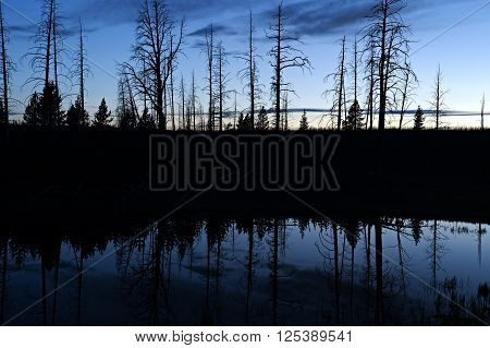 Silhouet reflection in a pond in Yellowstone National Park after sunset.