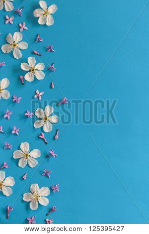 Spring flowers background on blue paper