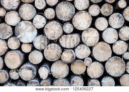 Close up of a stack of felled round timber