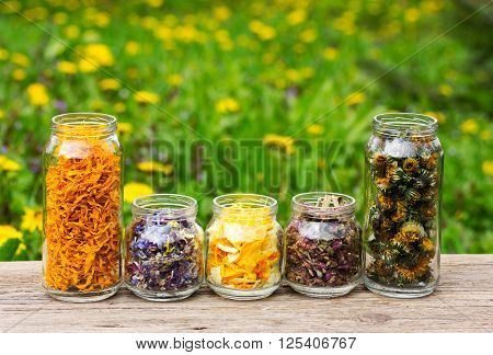herbs and flower petals in glass jars on the background of blossoming spring meadows. with space for text. the concept of aromatherapy homeopathy alternative medicine