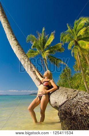 Idyllic Holiday Exotic Hideaway