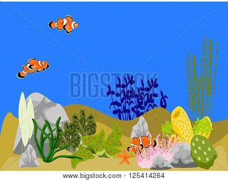 Underwater ocean scene with coral, plants, rocks, and three clown fish