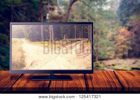 Flat screen television against narrow dirt road leading to two different track along trees