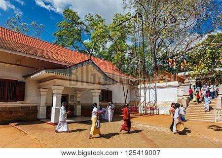 ANURADHAPURA, SRI LANKA - SEPTEMBER 26, 2009: Piligrims visiting Sri Maha Bodhi tree sacred Buddhist site. It grew of branch of the Bodhi tree under which Buddha achieved Enlightment