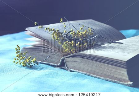 Spring still life - Open old book lying on the blue linen tablecloth with yellow mimosa flowers. Blue pastel processing. Selective focus at the book spine.