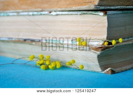 Spring still life - stack of old books with yellow mimosa flowers. Soft filter processing. Selective focus at the upper flowers and pages.