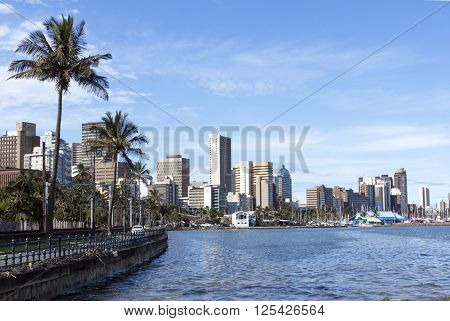 Palm Trees Harbor And Durban City Skyline