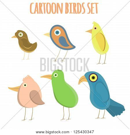 Vector Collection Cartoon Birds. Colorful Bird. Paradise Bird. Set Flat Birds. Isolated