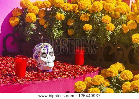 chile and flowers dia de muertos celebration