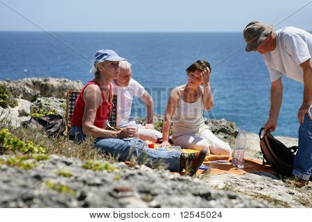 Portrait of a senior group picnicking on the seafront