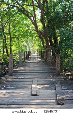Wooden Board Walk Path Leading To Destination