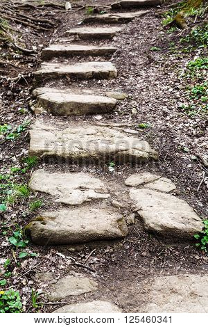 Stone Steps From Ravine