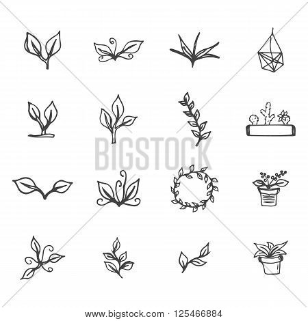 Set of hand drawn flowers leaves cactus and flower pots. Spring ink floral design with leaves and wreath for easter