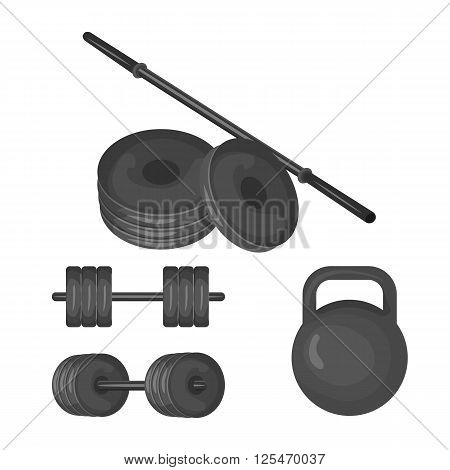Dumbbell, kettlebell, disk weight and barbell icon isolated on the white background. Sports equipment illustration set for gym or fitness club flayers in flat design.