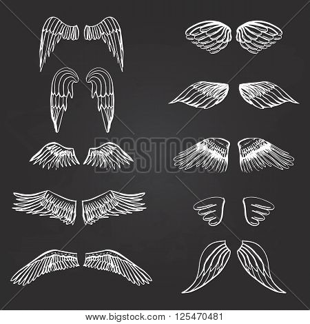 Wings illustration silhouettes set for making your own logo, badge, label design