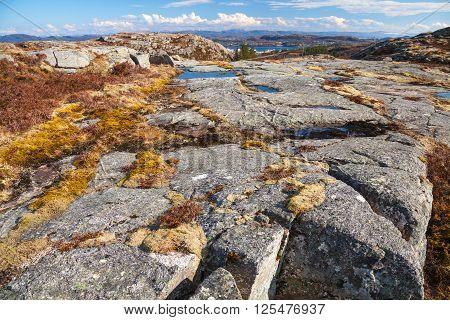 Norwegian Mountains, Wild Landscape