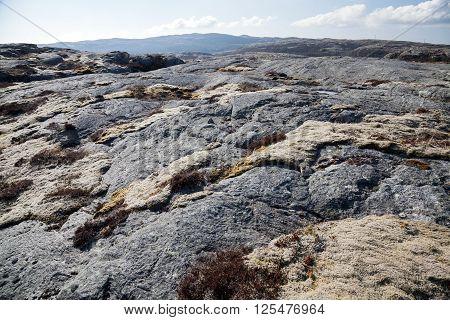 Norwegian Landscape, Dark Gray Flat Rocks