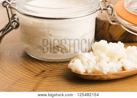 Organic Probiotic Milk Kefir Grains