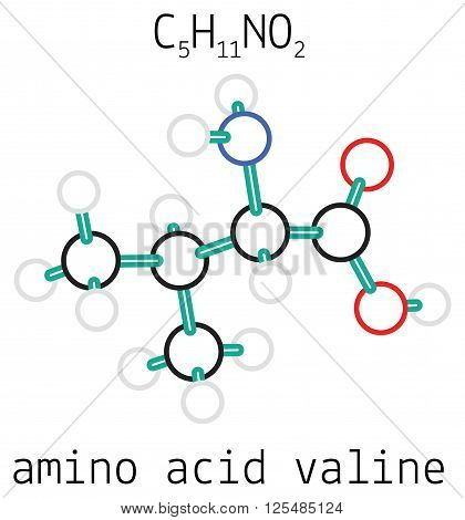 C5H11NO2 valine 3d amino acid molecule isolated on white