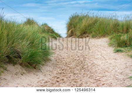 Footpath through sand dunes with blue sky ahead