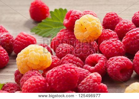 Red and Yellow Raspberries on wooden background. Close up high resolution product. Harvest Concept