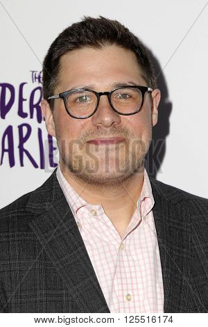 LOS ANGELES - APR 12:  Rich Sommer at the The Adderall Diaires Premiere Screening of A24/DIRECTV Series at the ArcLight Hollywood on April 12, 2016 in Los Angeles, CA