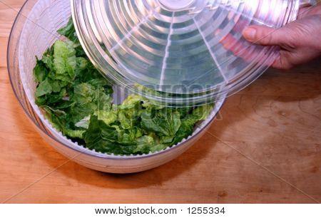 Romaine Lettuce In Salad Spinner