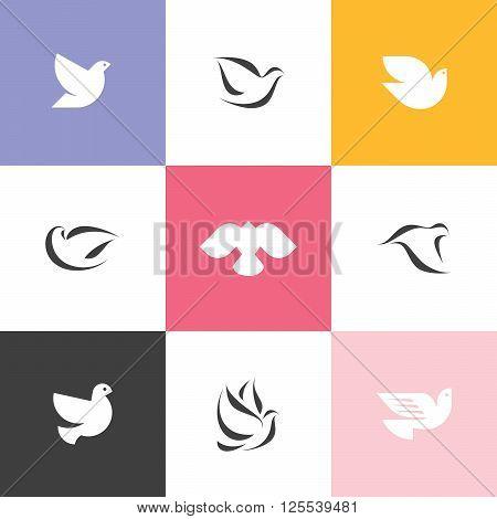 Dove. Set of pure elegant vector icons
