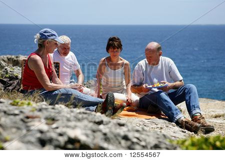 Group of senior having a picnic at the seaside
