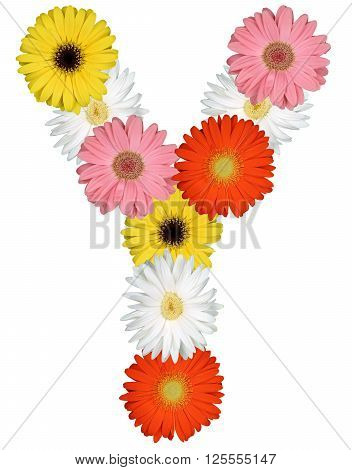 Letter Y Alphabet From Flowers Isolated On White