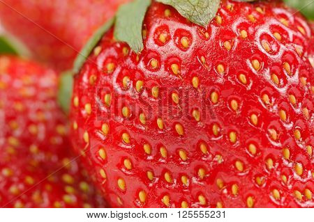 A macro shot of juicy red strawberries