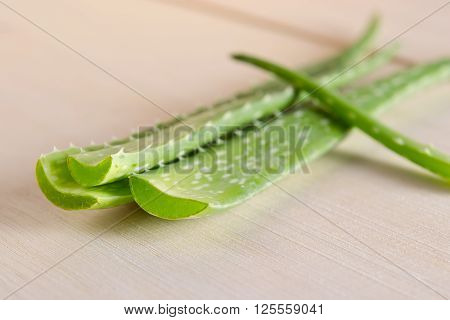 Aloe vera close-up view isolated on wooden board background