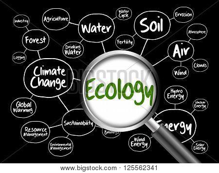 Ecology Mind Map Flowchart Concept