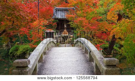 Eikando Shrine And Bridge With Autumn Foliage
