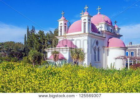 Orthodox Church And Mustard Field Near Galilee Sea