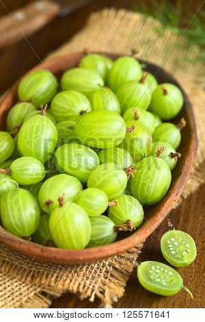 Raw gooseberries (lat. Ribes uva-crispa) in bowl photographed on dark wood with natural light (Selective Focus Focus in the middle of the image)