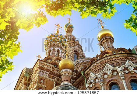Cathedral of Our Saviour on Spilled Blood in Saint-Petersburg Russia - closeup of architectural landmark framed by green leaves with bright sunlight