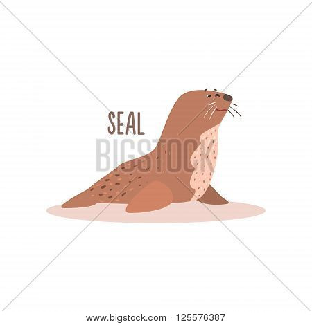 Seal Drawing For Arctic Animals Collection Of Flat Vector Illustration In Creative Style On White Background