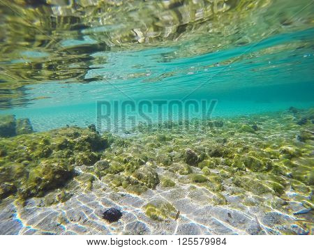 white sand and rocks underwater in Sardinia