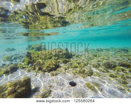 turquoise sea in Sardinia seen from underwater