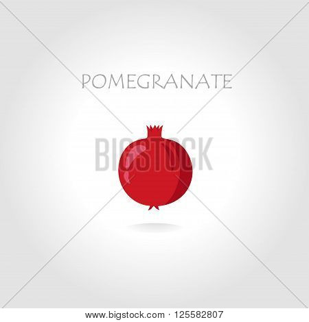 fresh pomegranate vector illustration with text tittle in sunlight abstract