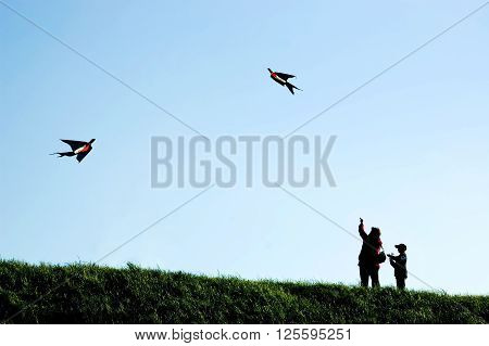 Mother and son fly bird-shaped kites in the wind silhouetted against the sky