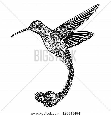 hummingbird tattoo. psychedelic, zentangle style. Vector illustration on a white background
